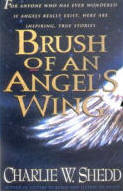 Brush of an Angel's Wing by Charlie Shedd